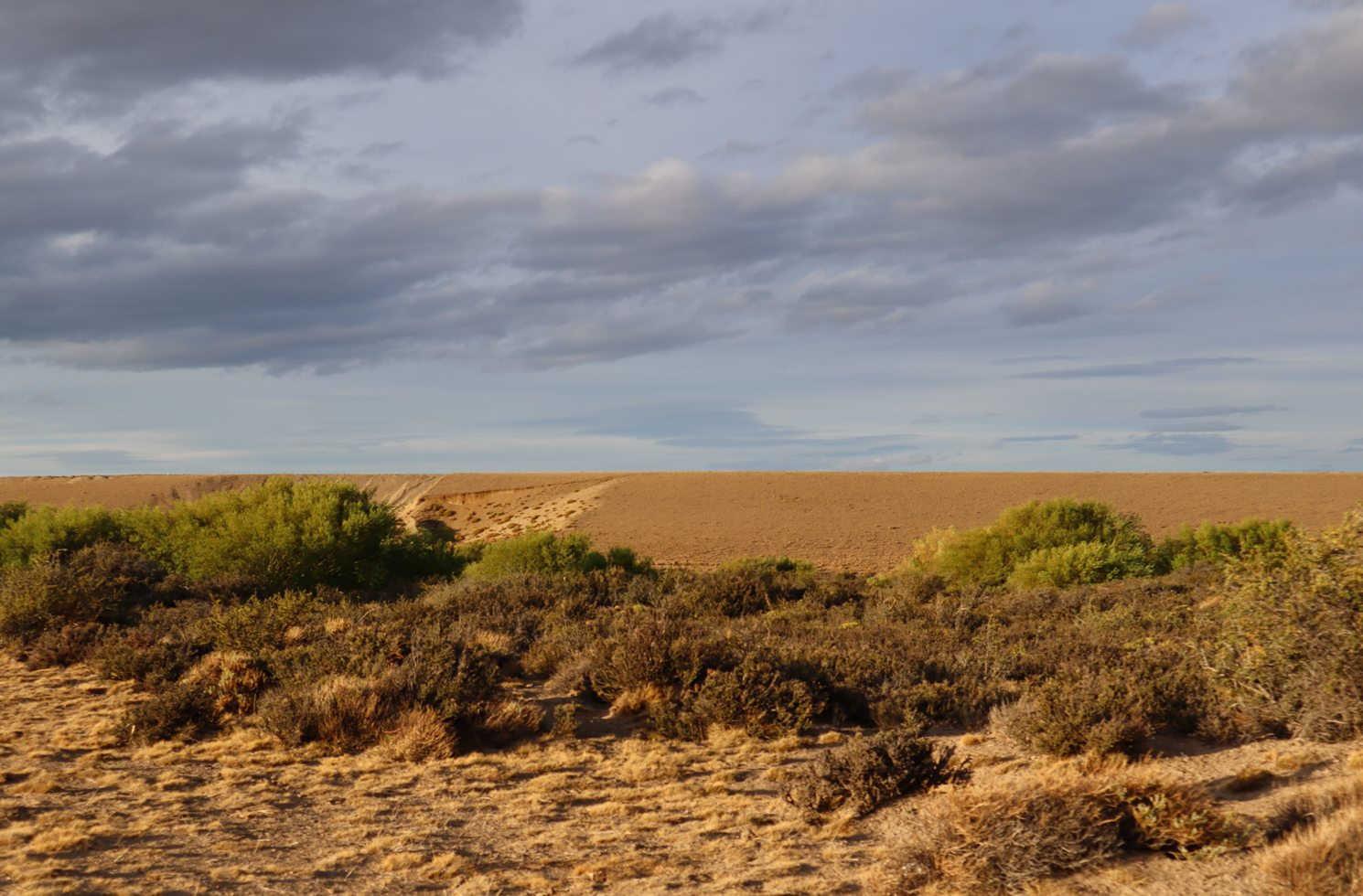 Tamel Aike in der Provinz Santa Cruz, Argentinien