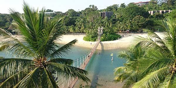 Strand mit Palmen und einer Hängebrücke