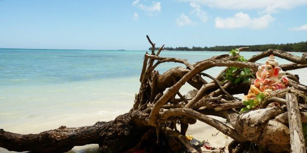 Neue Eindrücke für digitale Nomadin Jana auf Mauritius