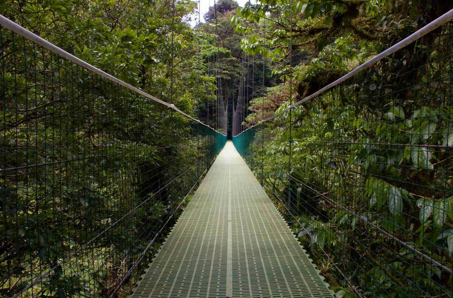 Selvatura, Guanacaste Province, Monteverde in Costa Rica