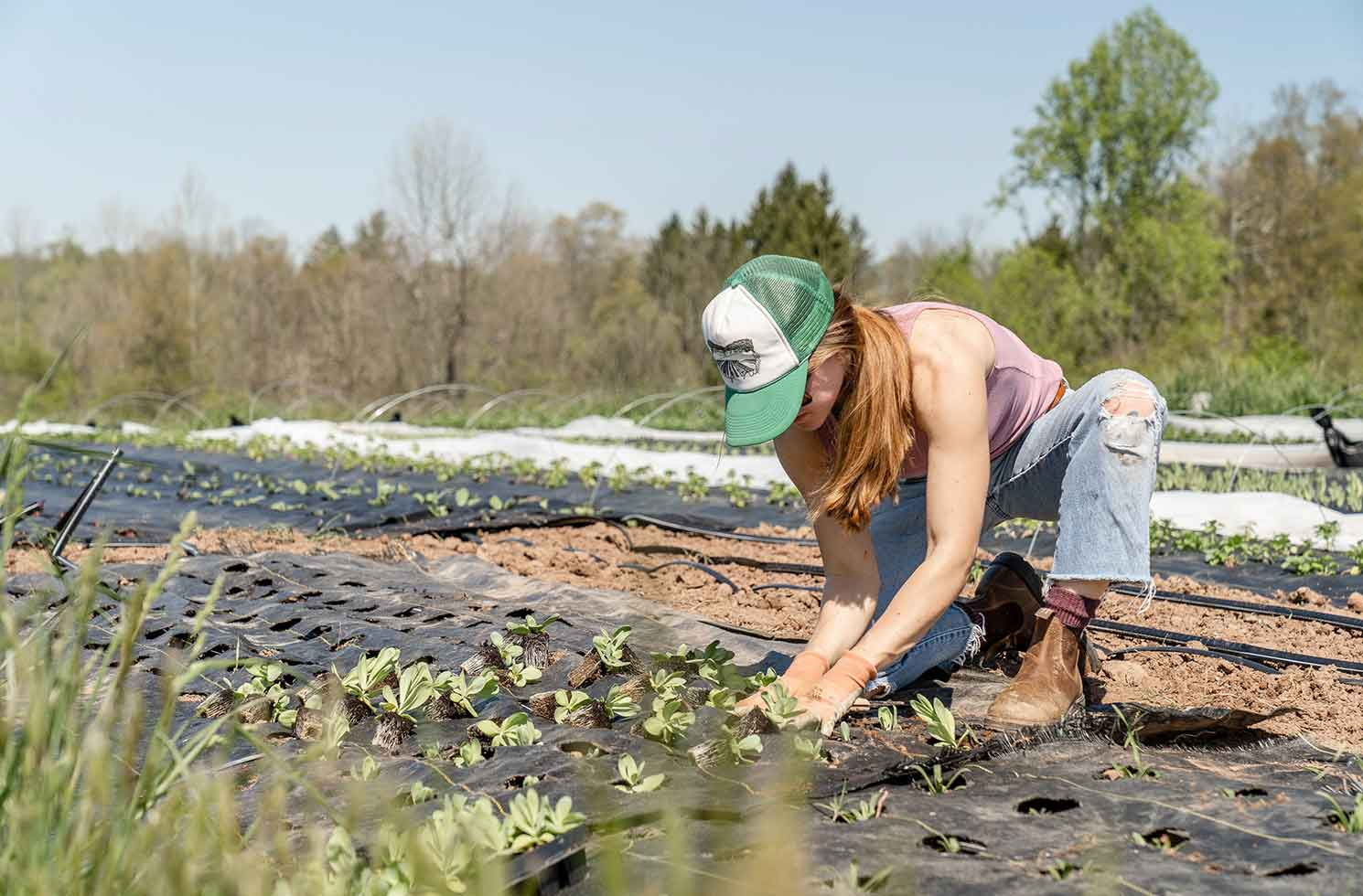 Farmarbeit & Farmstays weltweit