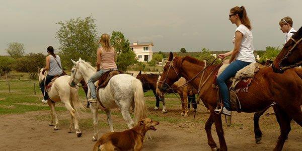 Farm-Jobs in Argentinien