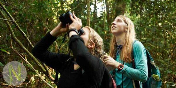 Praktikum im peruanischen Regenwald
