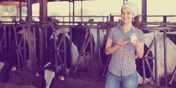 Praktikum in den USA: Milchviehhaltung (Landwirtschaft)