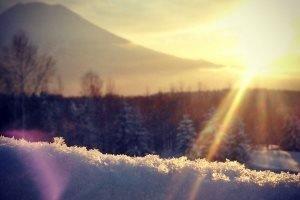 Schneetag Japn Niseko Work&Travel