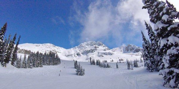 Blick auf eine Skipiste in Whistler