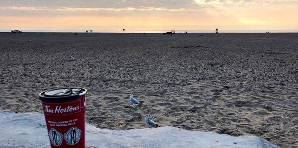 Blick auf den Strand in Toronto mit einem Kaffee von Tim Hortons