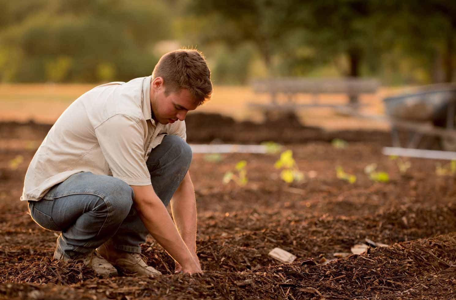 Auslandsjobs in Land- und Forstwirtschaft