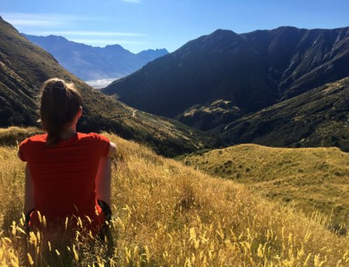 Work and Travel in Neuseeland abgebrochen… dank Corona!