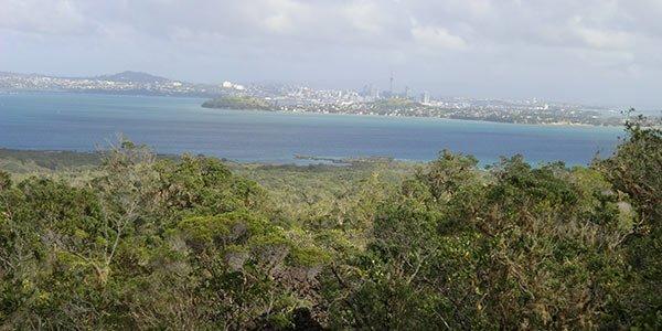 Ranitoto Island