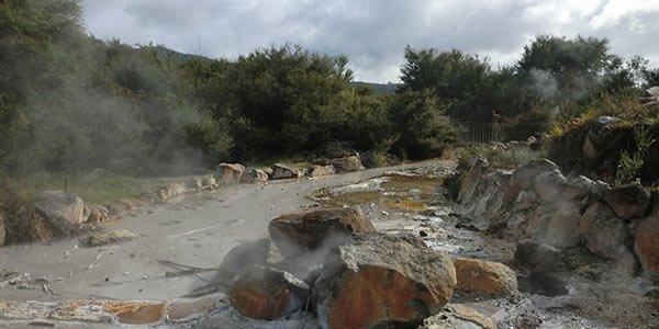 Felsige Landschaft in Rotorua