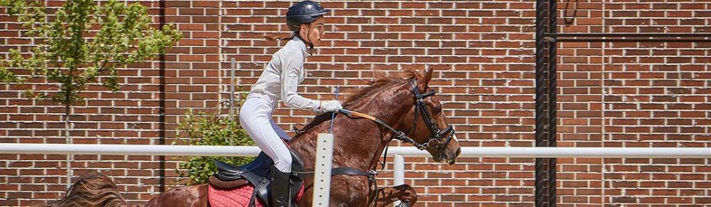 Reiterin springt mit Pferd über Hindernis
