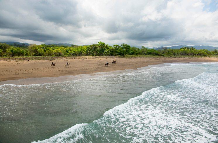 Pferde am Strand von Costa Rica