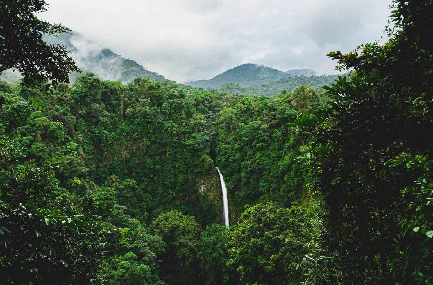 Praktikum in Costa Rica