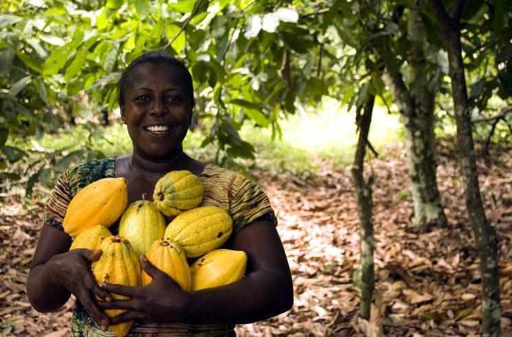 Frau mit Kakaofrucht in Ghana