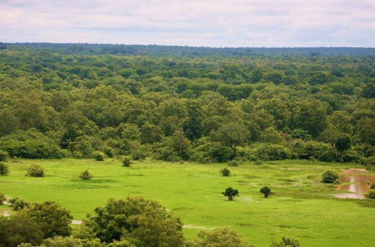 Nationalpark in Ghana