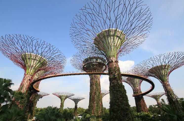 Garden in Singapur