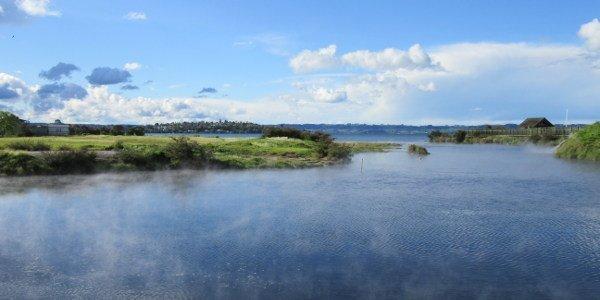 See in der Nähe von Rotorua