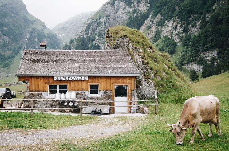 Käserei der Seealp in der Schweiz