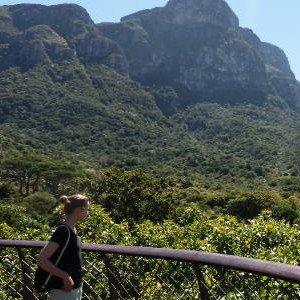 Kapstadt-Highlights wie den botanischen Garten Kirstenbosch sehen
