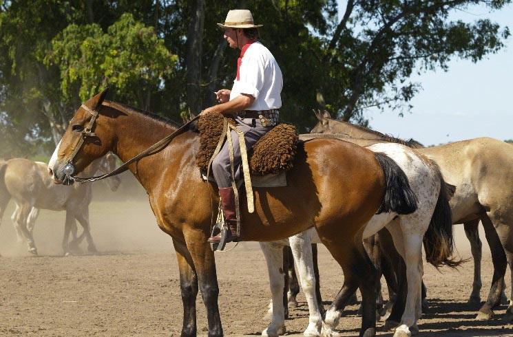 Gaucho in Argentinien
