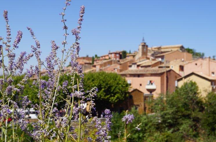 In der Provence in Frankreich