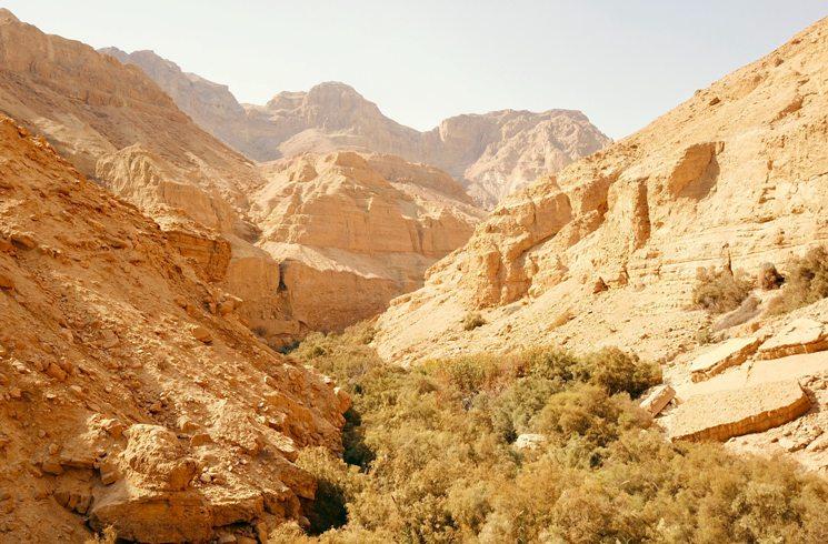 En Gedi Nationalpark in Israel