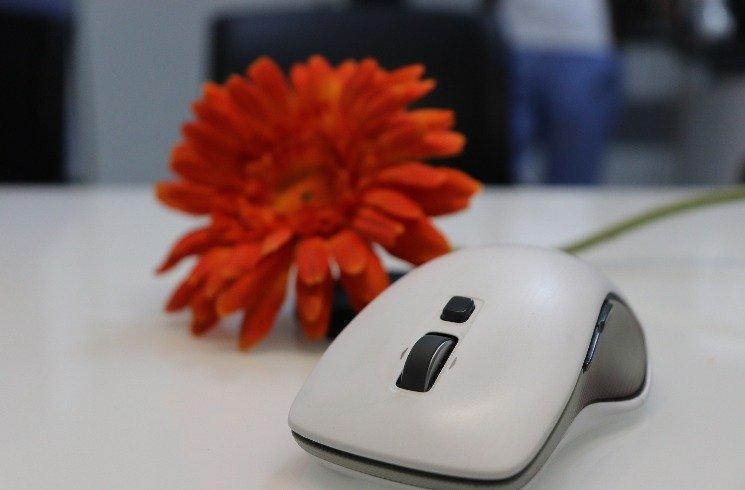 Computer-Maus: Erfindung aus der Schweiz