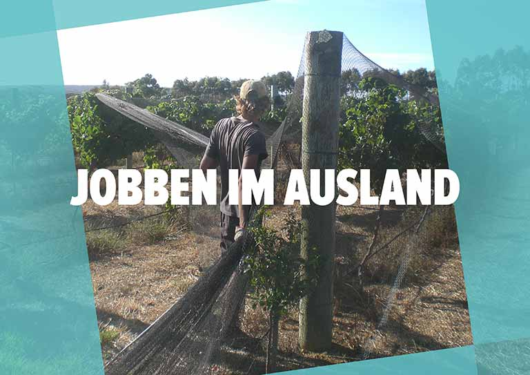 "Work & Travel Guide: Kapitel ""Jobben im Ausland"""