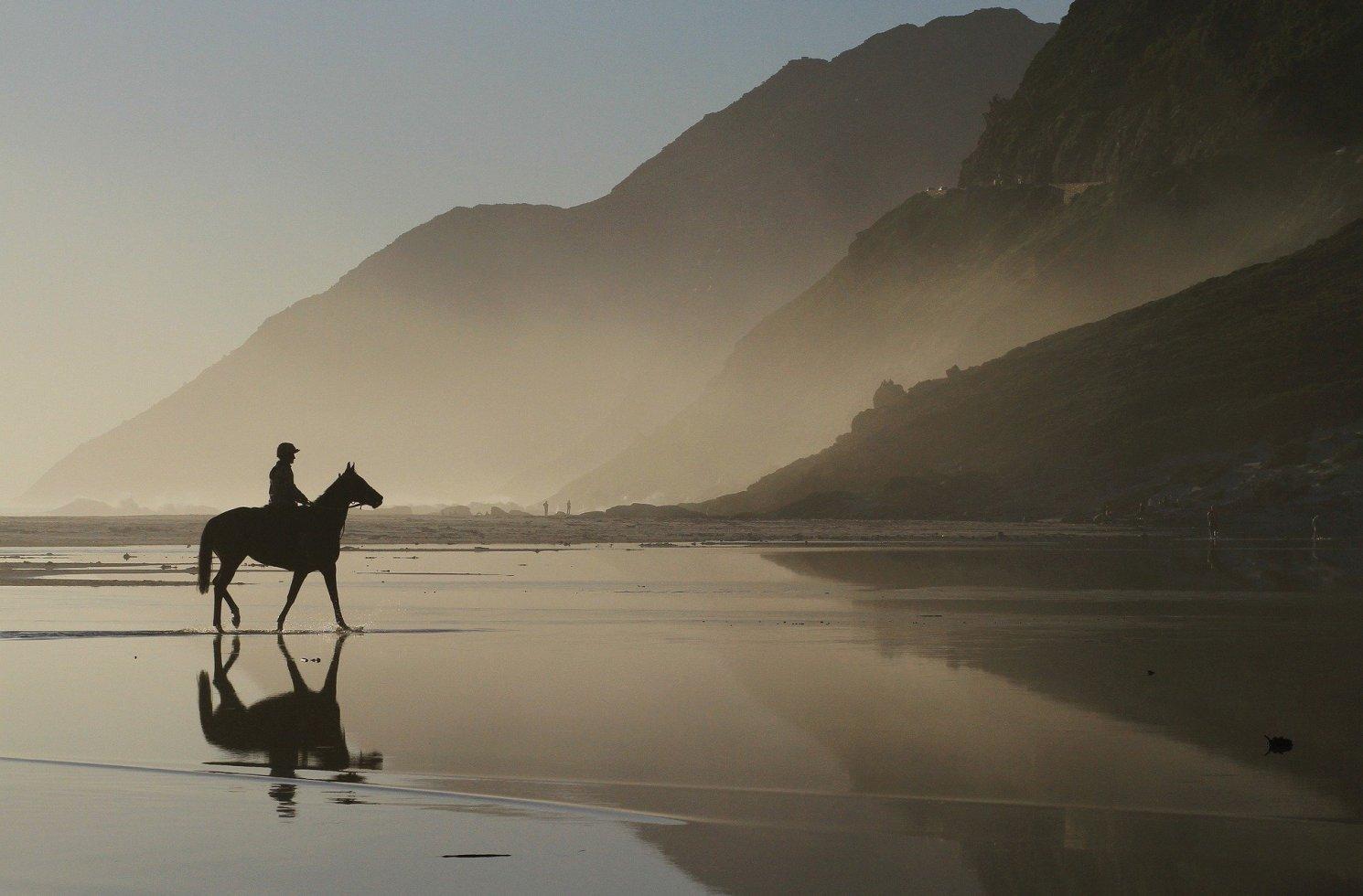 Working Holidays mit Pferden